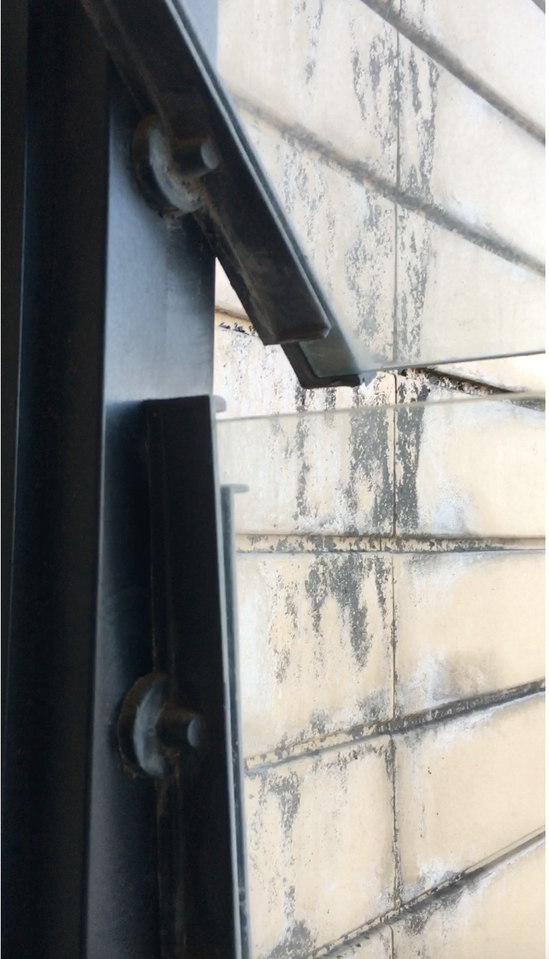 Плесень на внешней стене дома